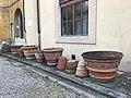 Giardino dei Semplici di Firenze 26.jpg