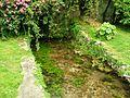 Giardino di Ninfa 100.jpg