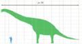 Giraffatitan scale-ar.png
