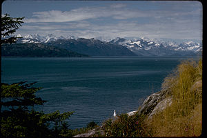 Glacier Bay National Park and Preserve GLBA4427.jpg