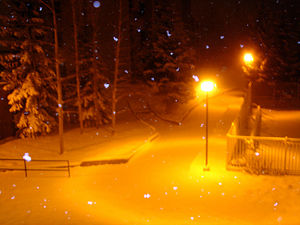 Golden Night Snow.jpg