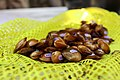 Golden riffleshell mussels ready for release.jpg