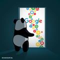 Google Panda Update drdiscount 02.png
