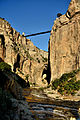 Gorges du Rhummel, vue du pont des chutes.jpg