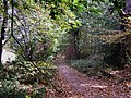 Gothersley Lane - geograph.org.uk - 1659095.jpg