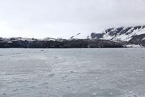 Grand Pacific Glacier - The Grand Pacific Glacier Terminus