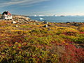 Greenland scoresby-sydkapp hg.jpg