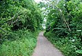Greensand Way between Wilmot Hill and Ightham Mote - geograph.org.uk - 1362602.jpg