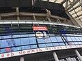 Groupama Stadium 503.jpg