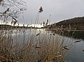 Höllerer See im März (7).jpg