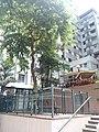 HK 西營盤 Sai Ying Pun 第三街遊樂場 Third Street Playground 公園 LCSD park green plants n trees August 2017 Lnv2 09.jpg