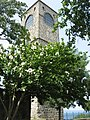 Hagia Sophia (Trabzon, Turkey) (27813320054).jpg