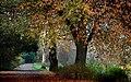 Hagley Park New Zealand. (16) (8069603598).jpg