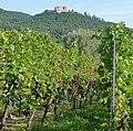 Hambacher Schloss - panoramio - Immanuel Giel (8).jpg