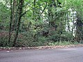 Harlaxton ironstone railway, reversing point at Swine Hill - geograph.org.uk - 1466438.jpg