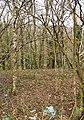Hartnoll Wood, Bittadon - geograph.org.uk - 690642.jpg
