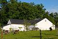 Haus vun der Natur h2007-06-24.JPG