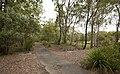 Hemmant Quarry Reserve (7117562301).jpg