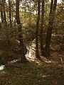 Herbst am Kuthfließ bei Eisenhüttenstadt - panoramio.jpg