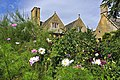 Hidcote Manor Gardens - geograph.org.uk - 1465005.jpg