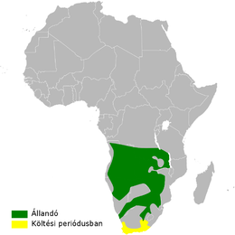 Hirundo dimidiata distribution map.png