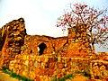 Historical monuments in feroz shah kotla.jpg