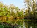 Hlyboke lake Muromets8.JPG