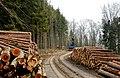 Holzabfuhr - panoramio.jpg
