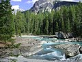 Horse River in Yoho National Park 幽鹤國家公園馬河 - panoramio.jpg