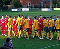 Horsham FC v Crawley Down Gatwick (8507798201).jpg