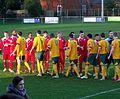 Horsham FC v Crawley Down Gatwick (8507798201).jpg