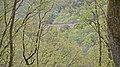 Hunsruck bahn - panoramio.jpg