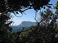 ISOLA DI TAVOLARA , VISTA DA CAPO CODA CAVALLO (S. TEODORO) - panoramio.jpg