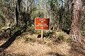 Ichetucknee Springs State Park Trestle Point trail 7.jpg