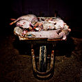 Igualdad Animal - Investigación Granjas Cerdos Toledo - Mayo 2010 1182 (6992290400).jpg