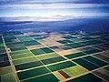 Imperial valley fields.jpg
