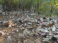 Impromptu Rubbish Dump (8408779543).jpg