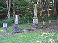 Indian Castle Church cemetery.jpg