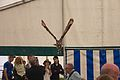 Indian Eagle Owl, Cheshire Game and Country Fair 2014 7.jpg