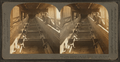 Inside conveyer line which conveys coal from shute at top of shaft up into breaker, Scranton, Pa., U.S.A, from Robert N. Dennis collection of stereoscopic views 2.png