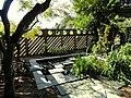 J. C. Raulston Arboretum - DSC06217.JPG