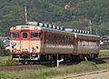 JRS DC kiha65-34 kiha58-293 express awa.jpg