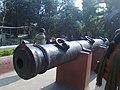 Jahan Kosa Gun 1.jpg