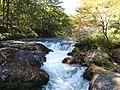 Japan, Tochigi - Nikko Senjogahara Yu river 2013 1.jpg