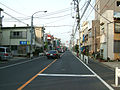 Japanese-National-Route-14-ChibaAvenue-at-Edogawa-ward.jpg