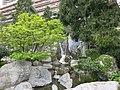 Japanese garden Monaco (acer palmatum).jpg