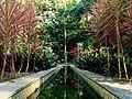 Jardim Botânico do Recife.jpg