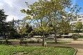Jardin Dominique-Chavoix Suresnes 11.jpg