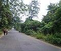 Jawahar Lal Nehru Avenue near Amravati, Durgapur, West Bengal, India, 13 Oct 2011 - panoramio.jpg