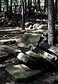 Jewish cemetery Sobienie Jeziory 25951856.jpg